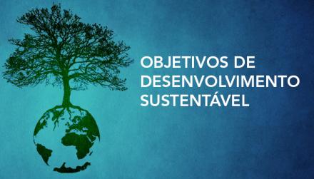 Definidos os novos Objetivos de Desenvolvimento Sustentável